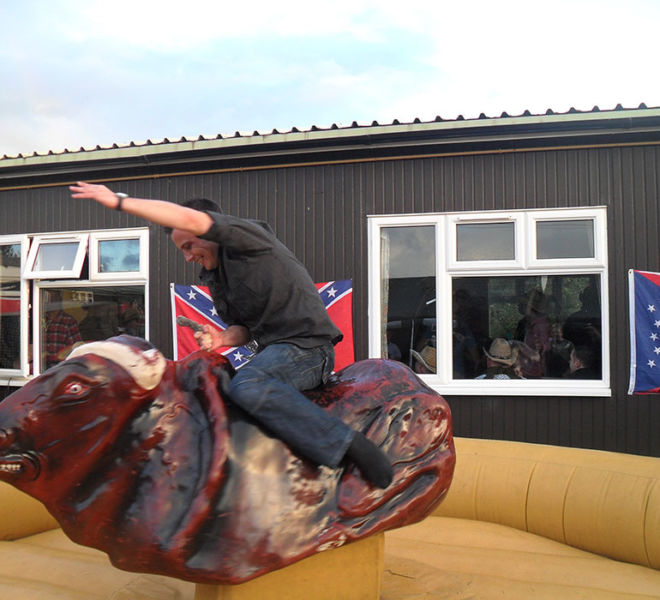 Rodeo bull at a Military event in Otterburn